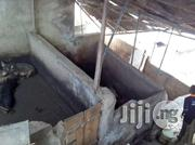 Pig pen   Livestock and Poultry for sale in Alimosho