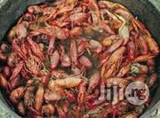 Crayfish Farming Manual   Livestock and Poultry for sale in Lugbe