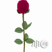 Flower Rose Ring Case   Party, Catering and Event Services for sale in Ikoyi