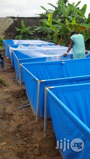 Mobile Fish Ponds Tarpauline | Fish for sale in Lagos Mainland